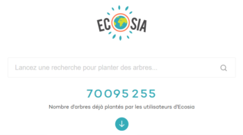 exemple-creer-logo-unique-ecosia-chickadeeblue