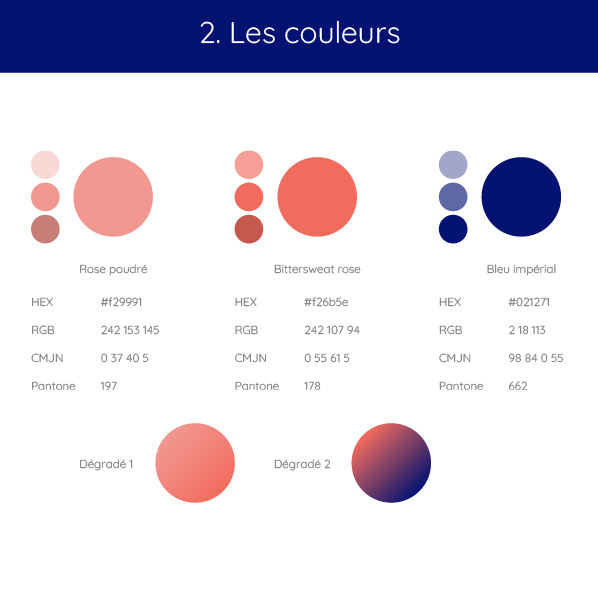 identite-visuelle-couleurs-palette