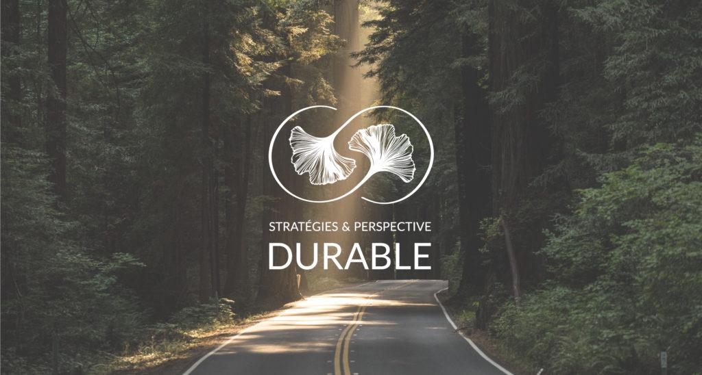 Identite_visuelle_strategies_perspective_durable_1
